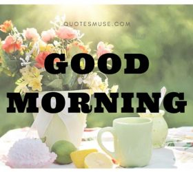 a good morning wish