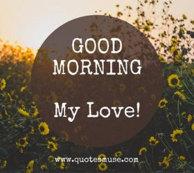 Good morning wish to lover