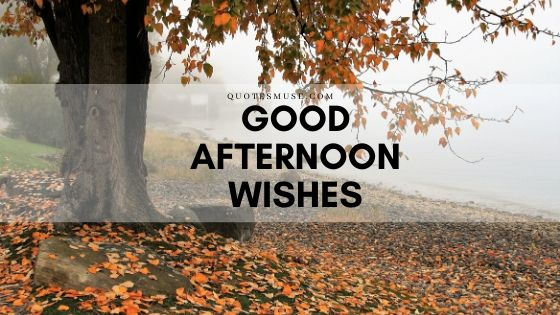 Good Afternoon Wishes for Spouse, Beloved and Friends