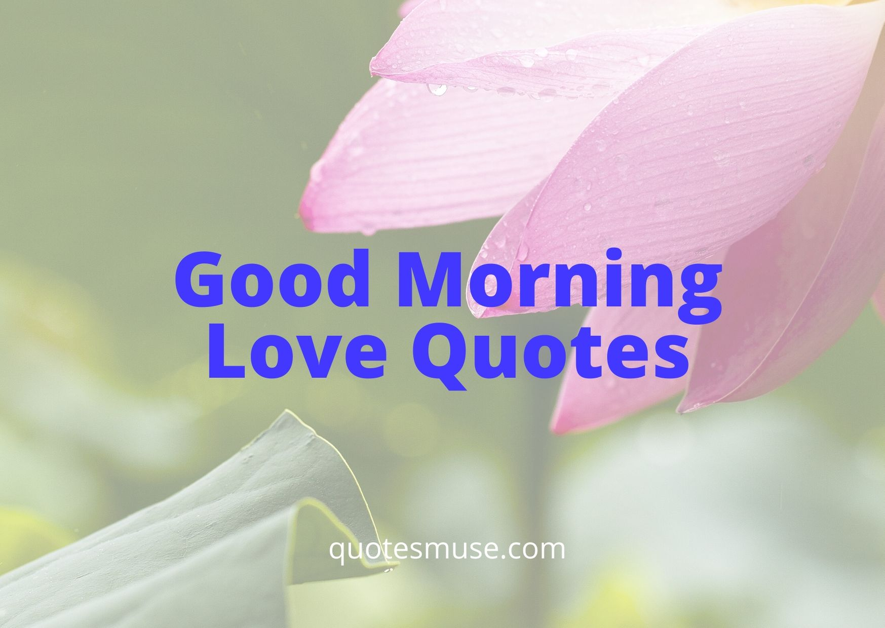 100+ Good Morning Love Quotes for the Dearest One