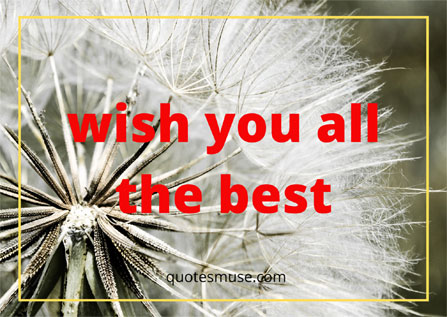 Wish You All the Best – Message for the Dearest