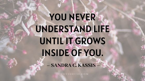New Mom Quotes for the First-Time Parents