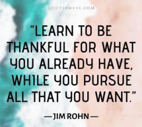 appreciation gratitude quotes