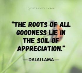 dalai lama quotes compassion