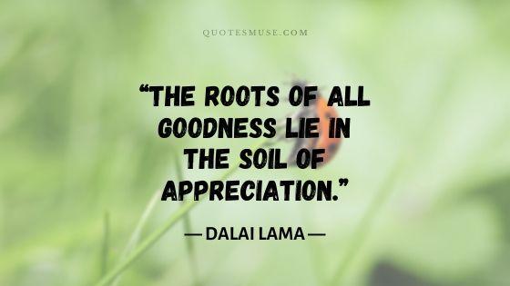 100 Memorable Dalai Lama Quotes on Compassion