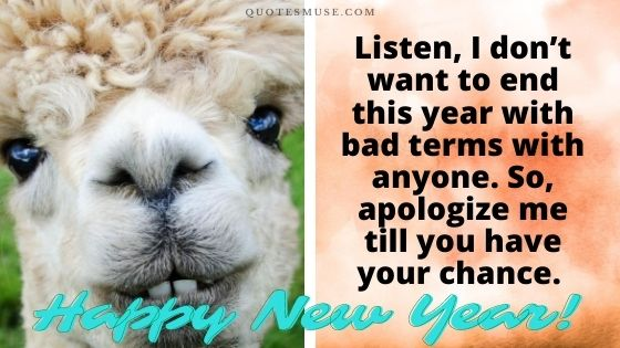 30 Funny Happy New Year Wishes – Really Amusing!