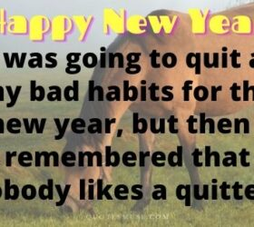 funny new year wishes funny new year status funny new year messages funny happy new year wishes funny new year greetings happy new year funny msg funny new year wishes for best friend funny new year wishes for friends sarcastic new year wishes funny new year wishes 2019 funny Chinese new year greetings funny happy new year wishes 2019 funny new year greetings 2019 witty new year wishes funniest new year wishes happy new year 2019 funny wishes funny ways to say happy new year hilarious new year wishes funny new year messages 2019 funny happy new year greetings new year wishes funny quotes comedy new year wishes humorous new year messages funny CNY greetings funny Christmas and new year wishes funny happy new year 2019 wishes quirky new year wishes crazy happy new year wishes funny new year text messages funny new year wishes messages best funny new year wishes funny new year messages 2018 funniest happy new year wish funny happy new year wishes messages funny 2019 new year wishes funny new year msg funny Chinese new year wishes happy new year comedy wishes funny new year greetings message funny happy new year wishes for friends funny new year texts humorous new year wishes humorous new year greetings hilarious new year messages funny new year wishes for colleagues new year wishes sarcastic funny new year's wishes new year naughty wishes very funny new year wishes funny new year's eve wishes funny new year messages for friends new year wishes comedy new year wishes for friends funny naughty happy new year wishes funny happy new year text funny new year wishes 2018 new year comedy wishes witty new year messages funny way to wish happy new year witty happy new year wishes merry Christmas and happy new year funny wishes funny new year greetings 2018 weird new year wishes funny Chinese new year greetings 2019 funny lunar new year greetings funny way to wish new year new year 2019 funny wishes funny 2019 new year greetings funny cny wishes
